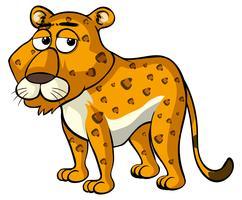 Gepard mit schläfrigen Augen