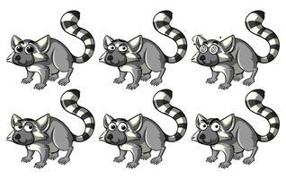 Lemur mit verschiedenen Emotionen