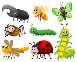 Verschiedene Arten von kleinen Insekten vektor