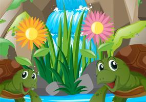 Två sköldpaddor vid vattenfallet vektor