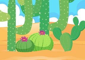 Ökenfält med vacker kaktus