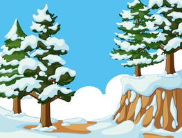Snö på träd och berg