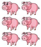 Schwein mit verschiedenen Gesichtsausdrücken vektor