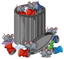 Viele Ratten suchen Mülleimer