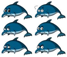 Blå delfiner med olika känslor