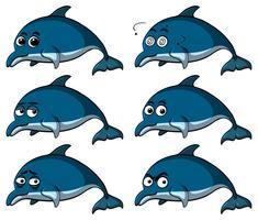 Blaue Delphine mit verschiedenen Emotionen
