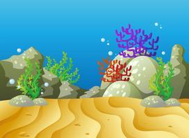 Unterwasserszene mit Korallenriff vektor