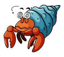 Hermit krabba med yrs ansikte vektor