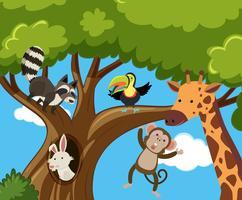 Många djur på trädet vektor