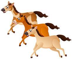 Tre hästar som går i grupp