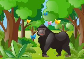 Gorilla och fjärilar i skogen vektor