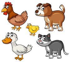 Verschiedene Arten von Nutztieren vektor
