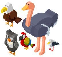 3D-Design für verschiedene Vogelarten