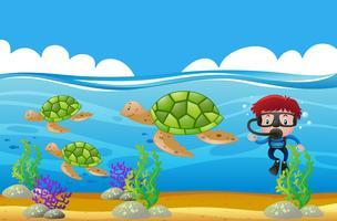 Dykare dyker under vatten med sköldpaddor