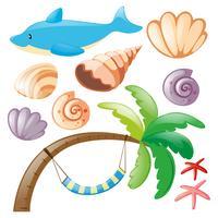 Delphin und Muscheln auf weiß vektor