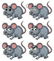 Råtta med olika ansiktsuttryck vektor