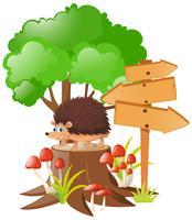Holzschilder und Igel auf Baumstumpf