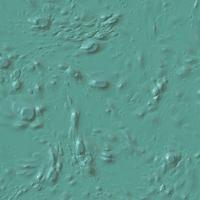 Våt färg textur bakgrund vektor