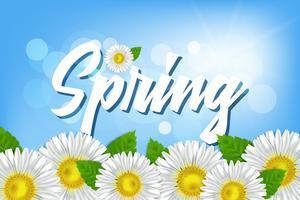 Aufschrift Frühling gegen einen blauen Himmel mit Kamille