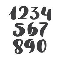 Vektorsatz kalligraphische Tintenzahlen. ABC für Ihr Design, Bürstenbeschriftung, moderner kursiver Guss der handgeschriebenen Bürstenart lokalisiert auf weißem Hintergrund