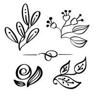Set Handdragen Vildblommor gren vektor teckning och skiss med line-art på vita bakgrunder, för botanisk logotyp