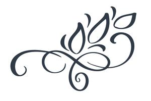Handritad gränsblom separator Kalligrafi designelement. Vektor vintage bröllop illustration Isolerad på vit bakgrund