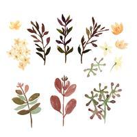 Blumen- und Blattaquarellelemente stellten handgemalte üppige Blumen ein. Illustration von stieg, Pfingstrose, wenig Blumenweinlese, lokalisiertes Aquarell. Entwerfen Sie Dekor für Einladungskarte, Hochzeit, Plakat, Banner.