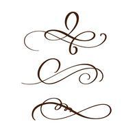 handgezeichnete Flourish Separator Kalligraphie-Elemente. Vektor-Illustration