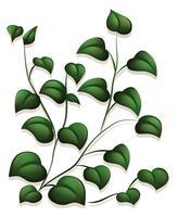 Blätter vektor