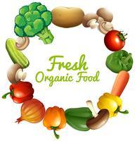 Gränsdesign med färska grönsaker vektor