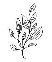 Übergeben Sie das gezogene moderne Blumenzeichnen und -skizze, die mit Linie Kunst, Vektorillustrations-Hochzeitsdesign für T-Shirts, Taschen, für Poster mit Blumen, die Grußkarten verziert sind, lokalisiert auf weißem Hintergrund