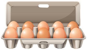 Karton mit rohen Eiern vektor