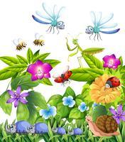 Många insekter flyger i trädgården vektor