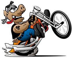 Radfahrerschwein, knallend einen Wheelie auf einer Motorradkarikatur-Vektorillustration