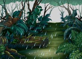 Bakgrundsscen med skog i regnet