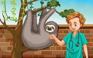 En manlig veterinär med sloth på zoo vektor