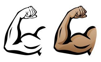 Muskulöser Arm, der Bizeps-Vektor-Illustration biegt