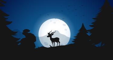 Silhuett Hjort på Night Forest vektor