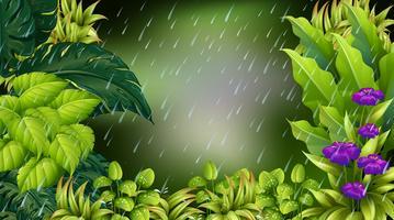 Waldszene am regnerischen Tag vektor