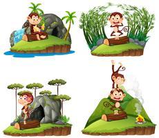 Fyra scener med apa i skogen