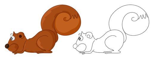 Animal skiss för ekorre
