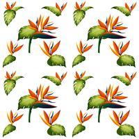 Seamless bakgrundsdesign med fågel av paradisblomma vektor