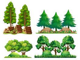 En uppsättning skogslandskap