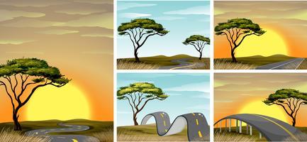 Vägen scener i savanna fält vid solnedgången