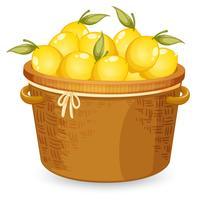 Ein Korb mit Zitrone vektor