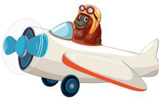 Orang-Utan, der ein Flugzeug reitet
