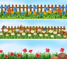 Trädgårds scener med blommor och staket