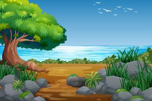 Riverside View med skogslandskap vektor