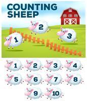 Räknar fårgårdskoncept