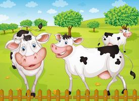 Kühe grasen im Hof vektor